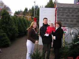 tree delivery and set up services in seattle