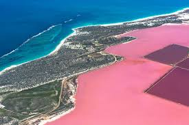 Pink Lake Youcamp Linga Longa Farm Stay