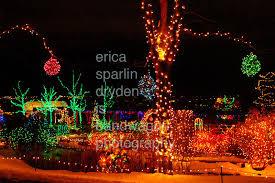 ericasparlindryden photo keywords idaho botanical garden winter