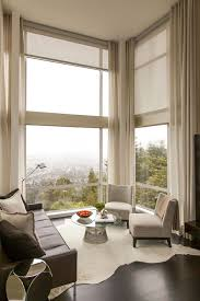 Blinds For Living Room Decorations Cool Living Room With Leather Sofa And Glass Coffee