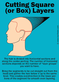 box layer haircut what box layers are and the technique to create box layers