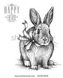 vintage rabbit easter rabbit bunny engrave illustration vintage stock illustration