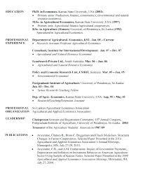 economics major resume resume for professor in college u2013 foodcity me