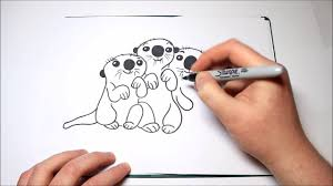 how to draw the otters from finding dory for kids youtube
