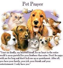 pet prayer pet prayer treat me kindly my beloved friend for no heart in the
