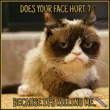 Grumpy Meme Face - another grumpy cat meme by the other grumpy kat 2017 does your face