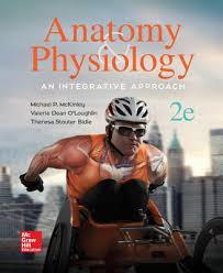 Human Anatomy And Physiology Textbook Online Anatomy U0026 Physiology An Integrative Approach Book By Dr Michael