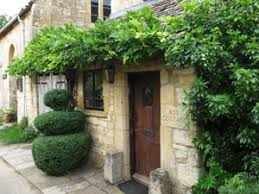 Topiary Plants Online - topiary plants trees and frames for sale topiary specialists at