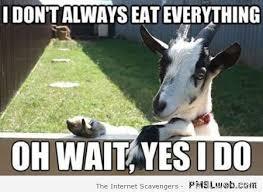 Meme Eat - 21 i don t always eat everything goat meme pmslweb