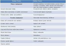 Innervation Of Supraspinatus Supraspinatus Tendonitis Physiopedia