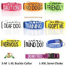 amazon com no dogs orange color coded alert l xl non pull dog