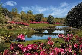 11 beautiful alabama gardens to visit this spring al com