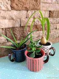 make a mug into a planter by drilling drainage holes with a