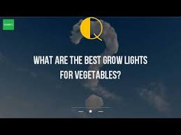 best grow lights for vegetables what are the best grow lights for vegetables youtube