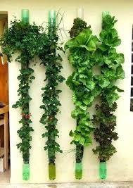 diy vertical herb garden vertical gardening diy vertical indoor vertical herb garden diy