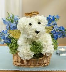 sympathy flowers dog in heaven pet sympathy flowers in fair lawn nj dietch s florist