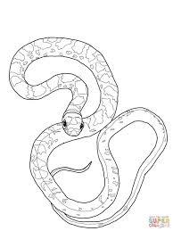 black racer snake coloring online super coloring for snake