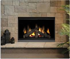 Direct Vent Fireplace Insert by Napoleon Gss48 Outdoor Linear 1 Sided Natural Gas Superior