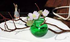 manzanita branches ebay