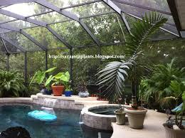 Decorating Florida Homes Best 25 Florida Lanai Ideas On Pinterest Lanai Ideas Lanai