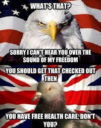 America Eagle Meme - murica