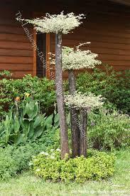 cheap garden decoration ideas 3526