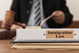 Immigration Attorney Resume Immigration Lawyers In London May Be Your Only Chance Isfma