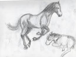 britt u0027s graphics animal drawing practice horses