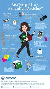 Anatomy Of A Data Analyst Resume Level Blog Great Administrative Assistant Resumes Administrative Assistant