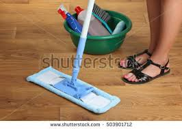 floor mop stock images royalty free images vectors