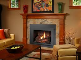 Fireplace Insert Screen by 616 Gsr Gas Fireplace Insert The Fireplace Place