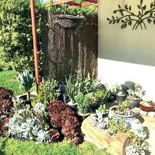 Small Rock Garden Images Small Rock Garden Ideas Inspiring Small Rock Garden Ideas 5