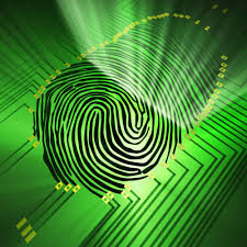 future of biometric payment advances mean the end of physical cards