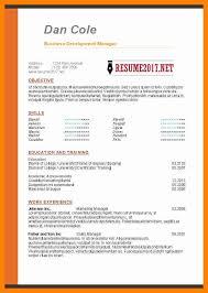 Best Resume Format 2013 by 7 Best Resume Format 2017 Sales Clerked