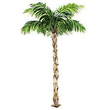 6 pre lit color changing novelty palm tree