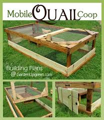 Backyard Quail Pens And Quail Housing by The Mobile Quail Coop Perfect For The Backyard Or Homestead