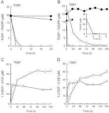 microbial degradation of persistent organophosphorus flame