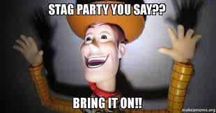 Stag Party Meme - stag party you say bring it on make a meme