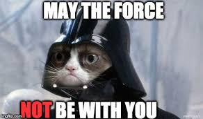 May The Force Be With You Meme - grumpy cat star wars meme imgflip
