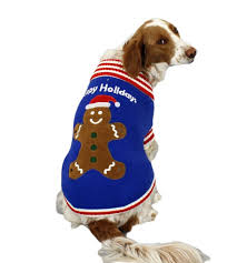 the 10 best sweaters for dogs iheartdogs