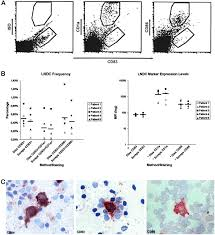 sampling tumor draining lymph nodes for phenotypic and functional