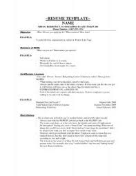 Simple Resume Objective Examples by Free Resume Templates Simple Template Word Sample Design