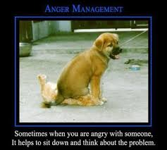 meme anger management garden info pinterest anger management