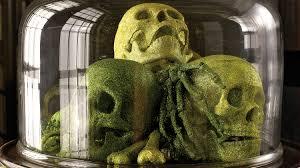 Martha Stewart Halloween Decoration Glittered Skulls Bones And Bugs U0026 Video Martha Stewart