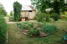 fresh home vegetable garden design 10887