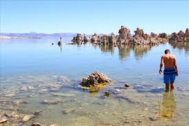 A Place Mono Saline Swim The Of Mono Lake S Unique Geology Draws