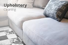 professional carpet upholstery cleaning company