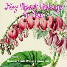 9 best valentine u0027s day cards images on pinterest flyers happy