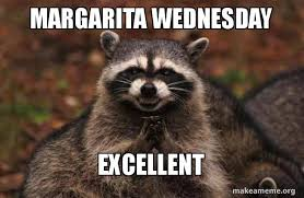 Meme Wednesday - margarita wednesday excellent evil plotting raccoon make a meme