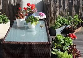 balcony garden bliss u2013 the urban observer